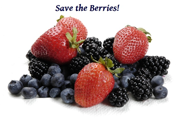 Save the Berries
